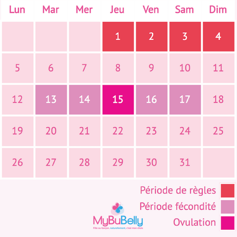 ovulation cycle 23 jours